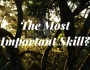 The Most Important Skill?
